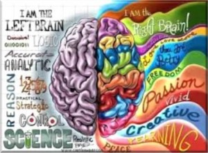 Left-Right Brain Function.