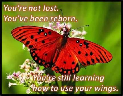 You're Learning How to Use Your WIngs