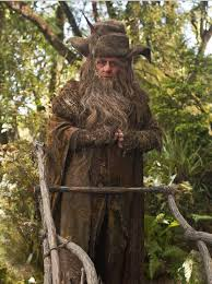 Radagast the Brown from The Hobbit.