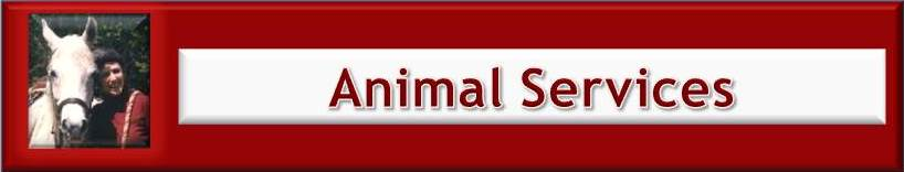 Animal Services.