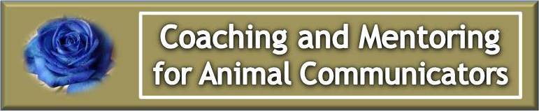 Coaching and Mentoring for Animal Communicator Professionals
